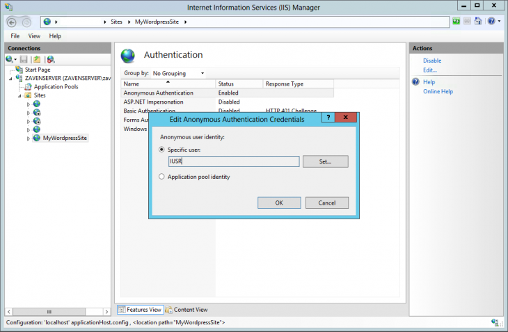 iis_authentication